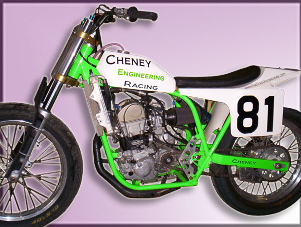 Very Cool Cheney, Jerry Scott Replica on display at the